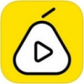 梨视频 V2.0.1 安卓版