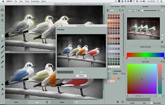 CODIJY Mac版V3.5.7 官方版