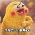 你的良心不会痛吗鹦鹉表情包