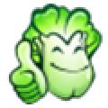 大白菜U盘启动盘制作工具 V8.0.17.117 最新装机版