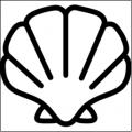 XSHELL for Mac V5.0