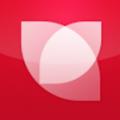花瓣网 V3.0.8 安卓版