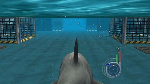 大白鲨单机游戏电脑版