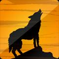 夜狼直播更新修复版安卓版