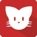 猫咪看片 V5.6.1 安卓版