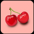 樱桃视频网 V3.5.20 安卓版
