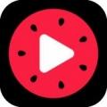 西瓜视频 V2.0.0 安卓版