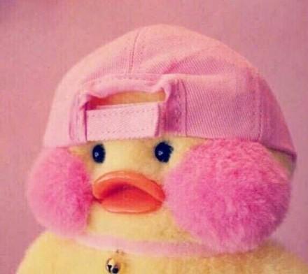 玻尿酸鸭表情包免费版