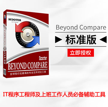 Beyond Compare 4 Win 标准版V4.1.3 标准版