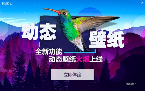 小鸟壁纸V2.1.0.2190 绿色版