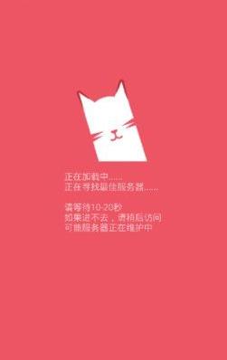 猫咪社区V1.0.8 破解版