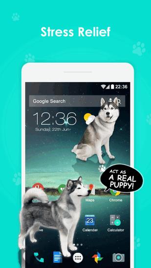 iDog狗在屏幕上V1.2 iPhone版