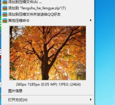 �O速看�DV1.1.9.0 官方版