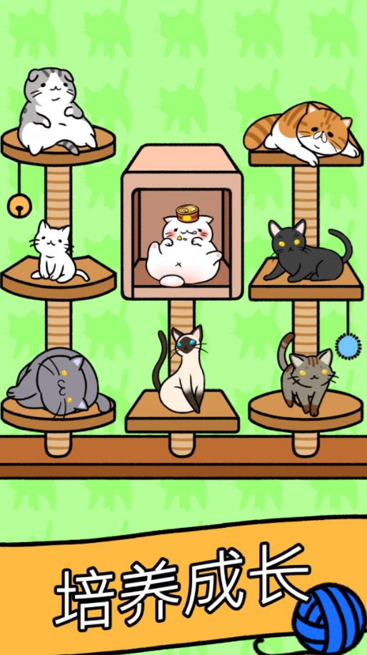 猫咪公寓V1.0 安卓版