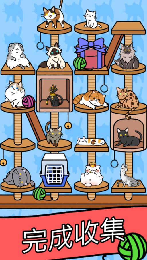 猫咪公寓V1.0 苹果版