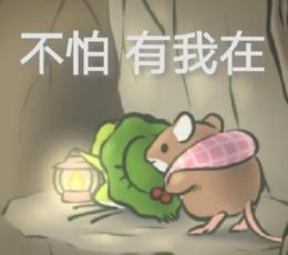 【旅行图片水印青蛙】旅行红包无青蛙恶搞图发表情包表情大全的图片