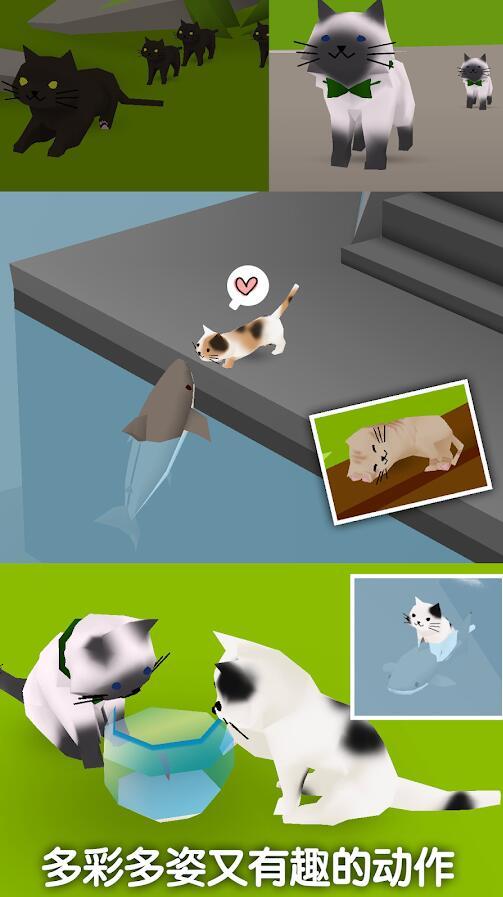 猫猫与鲨鱼V1.26 安卓版