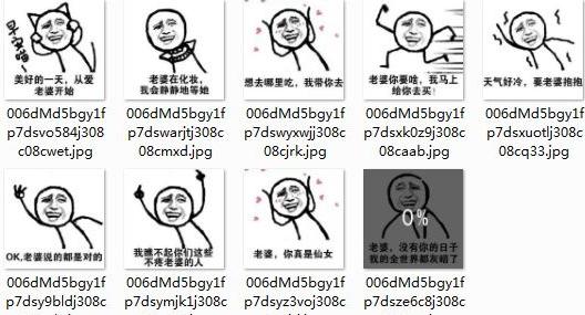 美好的一天从爱老婆开始表情包V1.0 高清版