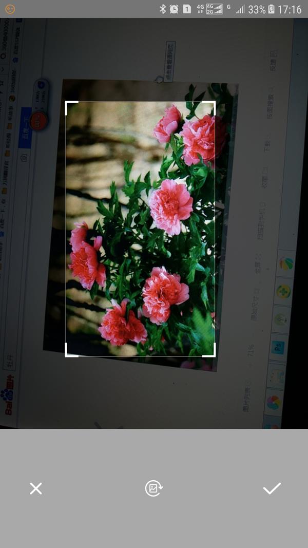 万能拍照识别V1.1 安卓版