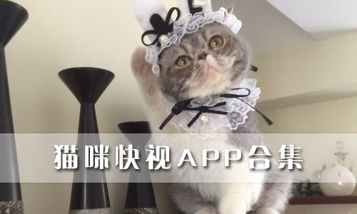 【猫咪快视】猫咪快视app官方下载|猫咪快视最