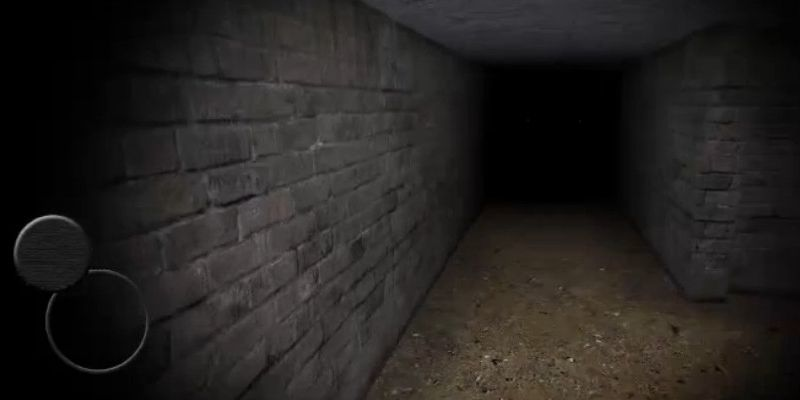 抖音恐怖地下室V1.0 安卓版