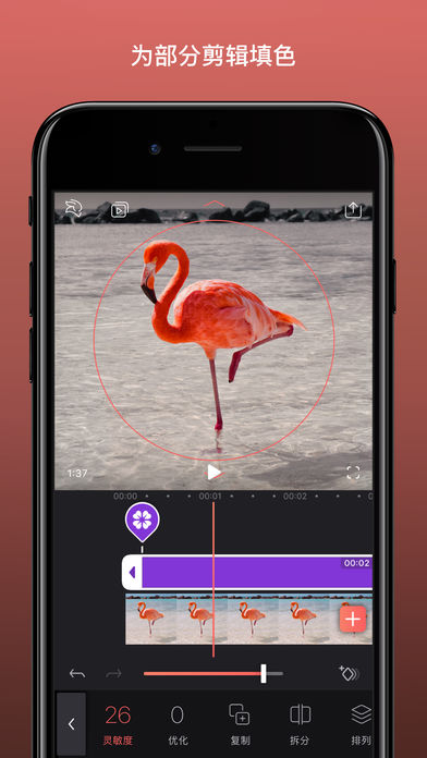 VideoleapV1.3 安卓版
