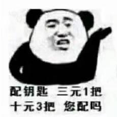 熊猫头配钥匙套路表情包