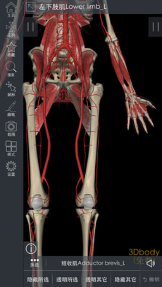 3DBody解剖V8.0.0 安卓版