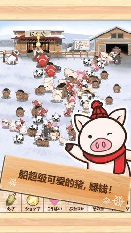 上市小猪V2.0 安卓版