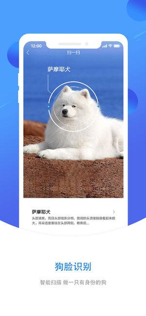 犬易V1.2.1 苹果版