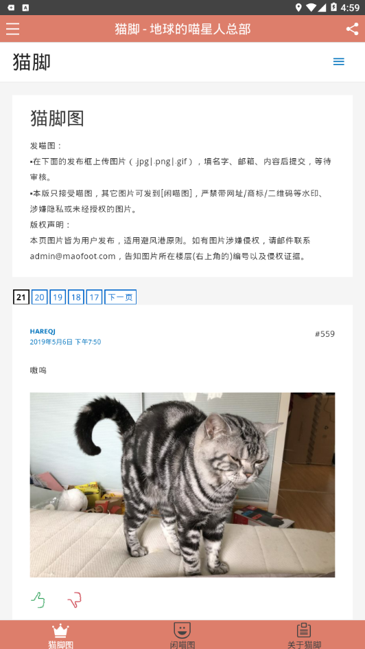 猫脚V2.0.2 安卓版