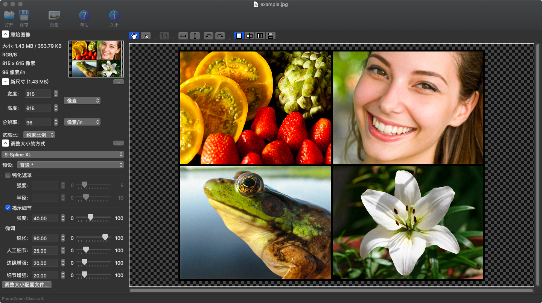 PhotoZoom ClassicV8.0 Mac版
