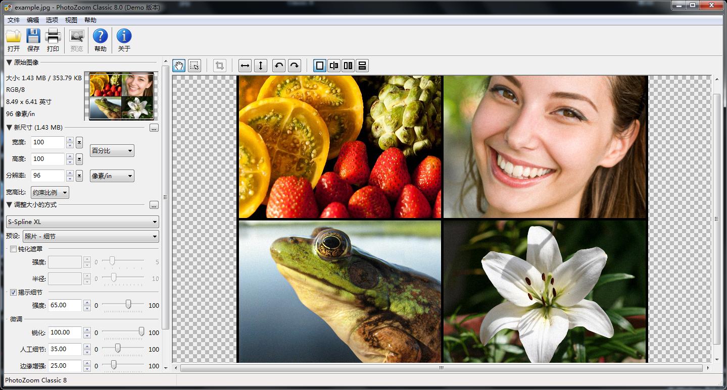 PhotoZoom ClassicV8.0 WIN版
