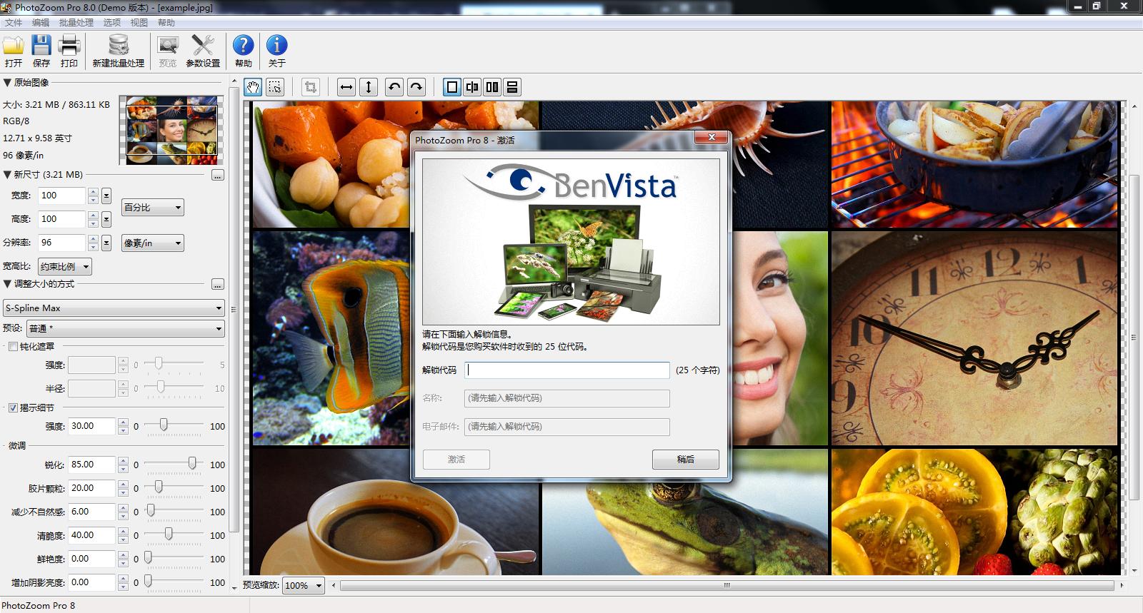 PhotoZoom ProV8.0 WIN版