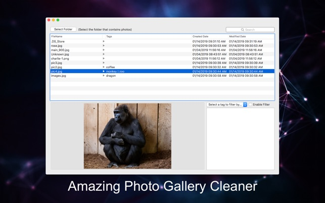 Gallery Photo CleanerV1.0.2 Mac版