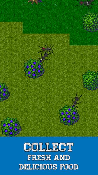 蚂蚁模拟器V1.2.925 安卓版