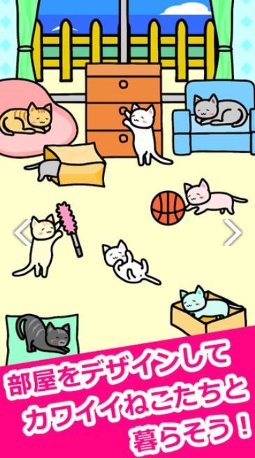 猫猫生活V1.0.0 安卓版