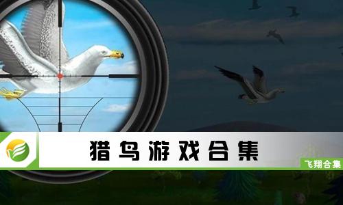 52z飞翔网小编整理了【猎鸟游戏合集】,提供关于猎鸟的游戏、手机猎鸟游戏大全。其中包括猎鸟大师、猎鸟射击模拟、猎鸟猎人、智美全职猎鸟等等,感兴趣的小伙伴快来下载体验吧!