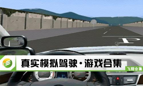 52z飞翔网小编整理了【真实模拟驾驶·游戏合集】,提供真实模拟驾驶游戏手机版、真实模拟驾驶中文版/破解版/无限金币下载。游戏模拟真实场景进行驾驶车辆,并且请玩家遵守交通规则,同时给你带来真实的驾驶感,让你在手机上可以练习下场外考试。