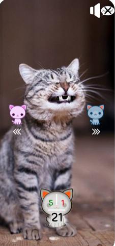 你是合格的猫奴吗V1.0 苹果版