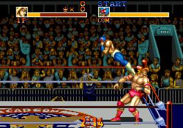 摔跤霸王完整存档版