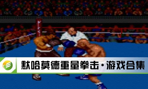 默哈莫德重量拳击