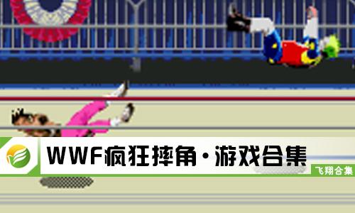 WWF疯狂摔角