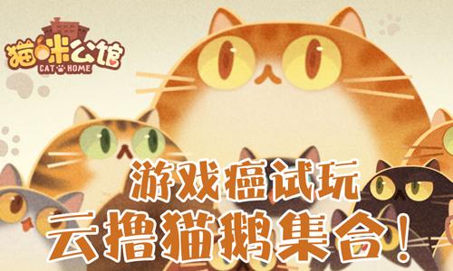 52z飞翔网小编整理了【猫咪公馆·游戏合集】,提供猫咪公馆猫咪解锁版、猫咪公馆破解版/无限小鱼干版/无限金币版下载。你可以在这里发现丰富的猫咪品种,每一只猫咪都有独特的名字,与它们一起玩耍一起成长,让我们开始建立属于自己的猫咪公寓吧。