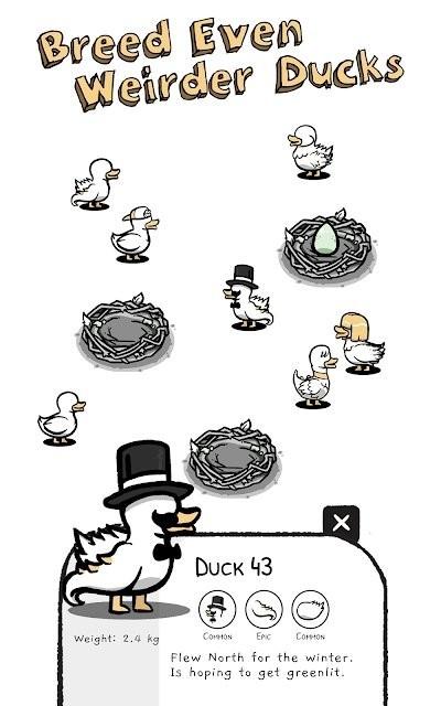 鸭星团V1.0.0 安卓版