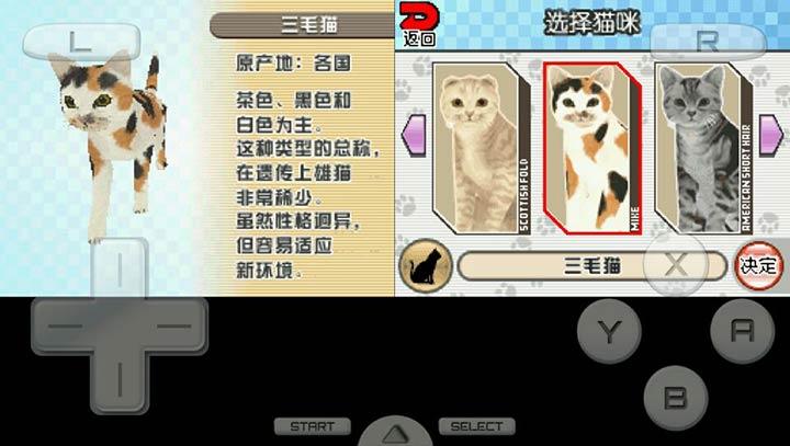 梦猫DS移植版