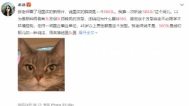 """""""985头""""网络热词出处/含义一览"""