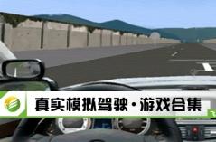 真实模拟驾驶·游戏合集