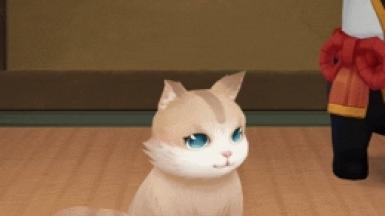 阴阳师花缘猫获取攻略