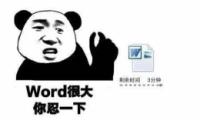 """""""Word很大你忍一下""""网络热词出处/含义一览"""